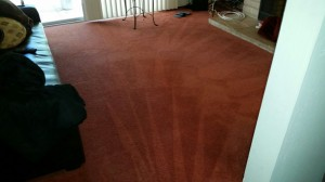 Carpet Cleaning Tomball 12e693d8a46ab513a76cd4a49aef1394